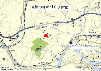 自然の森地図