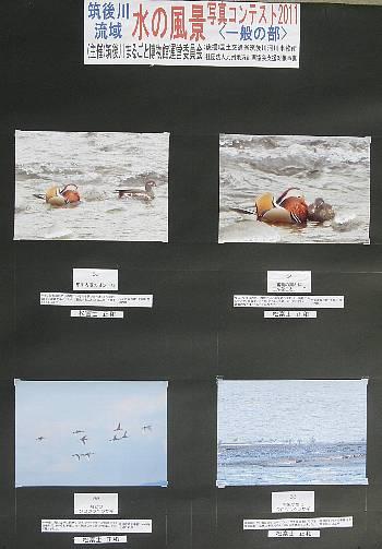 写真コンテ2011作品53-56