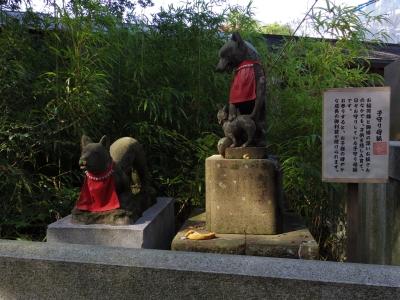 白笹稲荷(お狐様1)