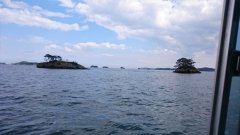 松島 遊覧