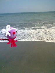 海岸とえせたこ