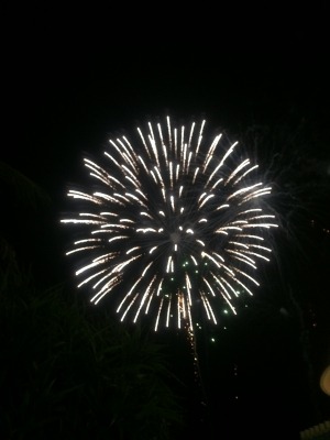 2015.08.13-16 沖縄 (249).JPG