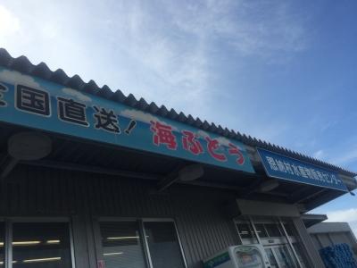 2015.08.13-16 沖縄 (270).JPG