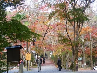 高槻 大阪 北摂 神峯山寺