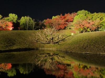 京都 梅小路公園
