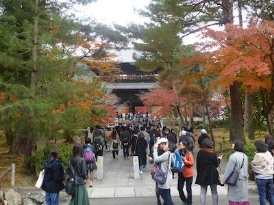 京都市 紅葉