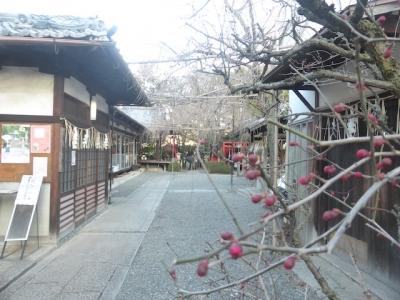 京都 水火天満宮