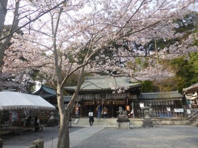 京都 熊野若王子神社