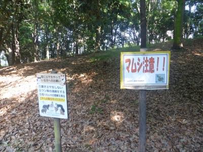 枚方市 山田池公園
