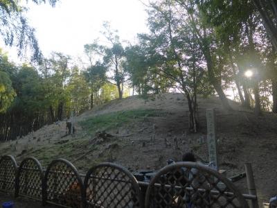 向日市 竹の径