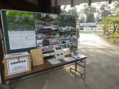 京都市 平野神社