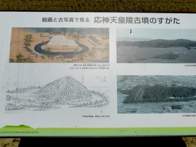 羽曳野市 応神天皇陵