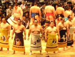相撲 大阪府立体育会館