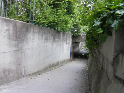ととろのトンネル入口1
