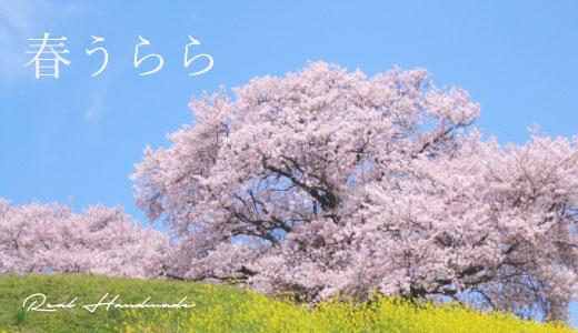 BL200326-02.jpg
