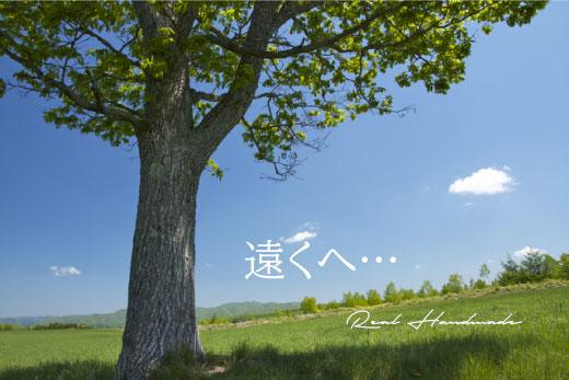 BL200517-01.jpg