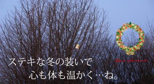 BL201112-03-OL.jpg