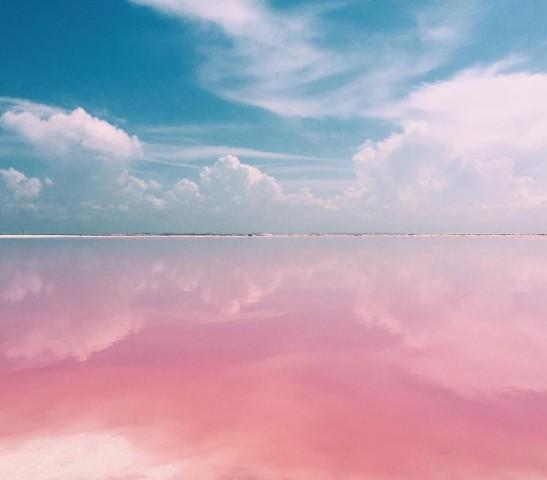 pink-catch-3-547x480.jpg