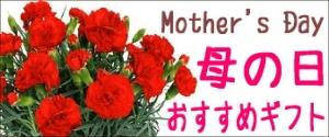 金沢観光-お土産-母の日