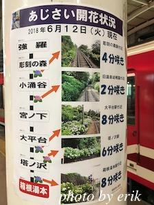 箱根登山電車と箱根登山ケーブルカーと湯坂路(鎌倉古道)ハイキングコース〜GORAブルワリーでビール