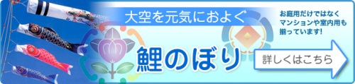 鯉のぼりバナー