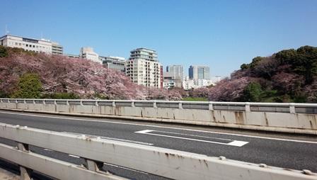 首都高速から見る千鳥ヶ淵