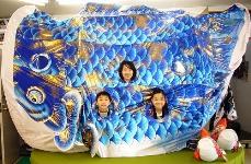 ジャンボ鯉のぼり150