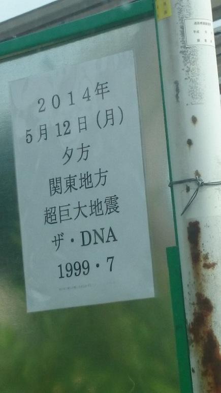 DSC_3247_1.JPG