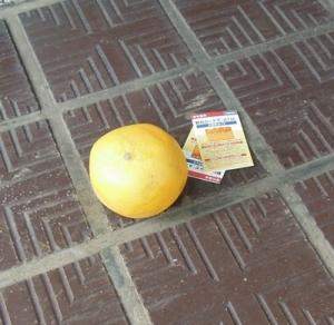みかん グレープフルーツ