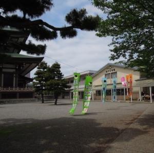 金沢幼稚園のこいのぼり