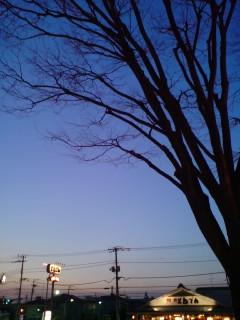 20070309_99963.jpg