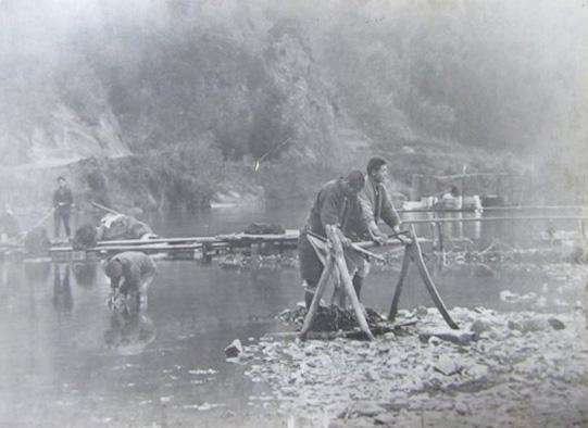 戦前、楮を川で晒す作業に従事する人