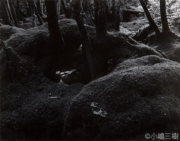 写真家「小嶋三樹」 太素杳冥