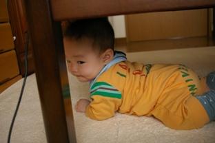 机の下がお気に入り