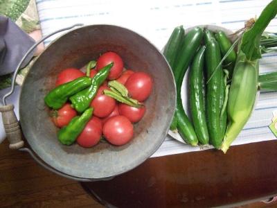 2016/7/18収穫