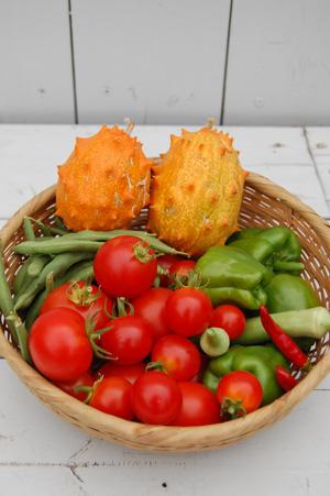 ベランダ野菜-079.jpg