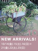 2011 Oct. 新着フェア
