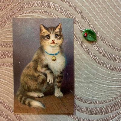 てんとう虫の手芸用パーツと猫のポストカード
