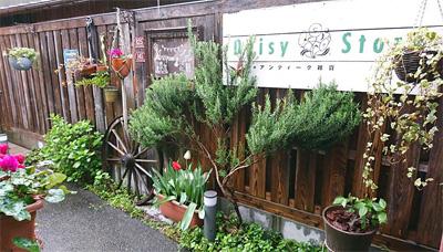 Daisy store(デイジーストア)看板