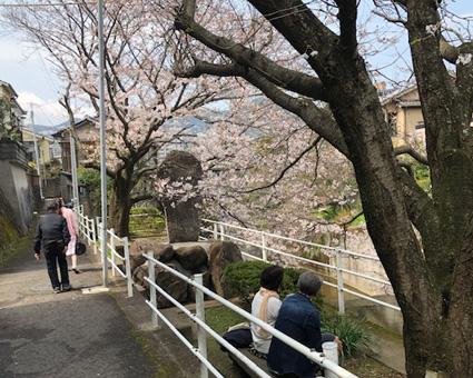 桜328.3