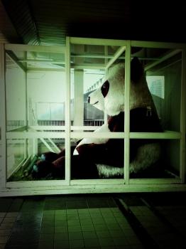 上野駅のパンダ君