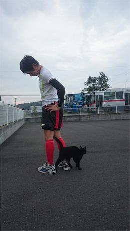 813-cat2.jpg