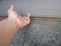 雨漏り富山ブログ
