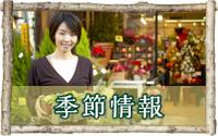 blog_kisetu.jpg