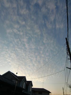 綺麗な空でしょうー