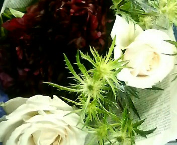 Flower�