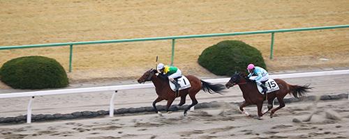 京都競馬場「貴賓室」