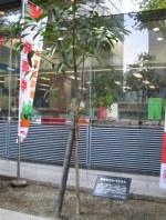 大阪市南郵便局