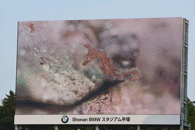 ・托シ・DSC_2566.jpg