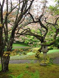 J garden